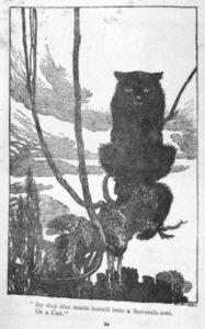 rackhamcat