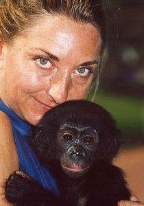 Bonobos & Their Forest – Radio!